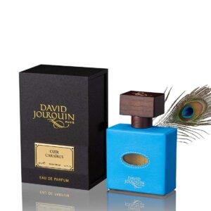 David Jourquin | Cuir Caraibes Vendôme | Dispar